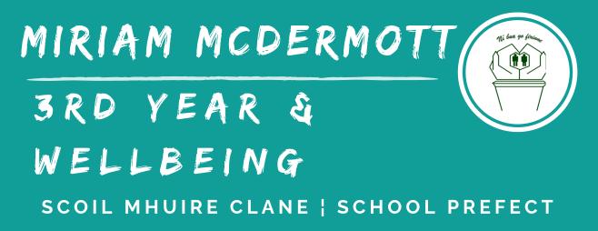 3rd year prefect banner